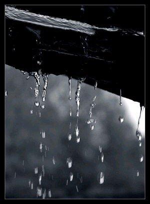 pluie1.jpg